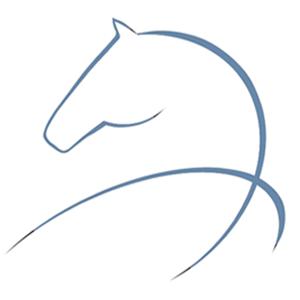 Horse Meditations