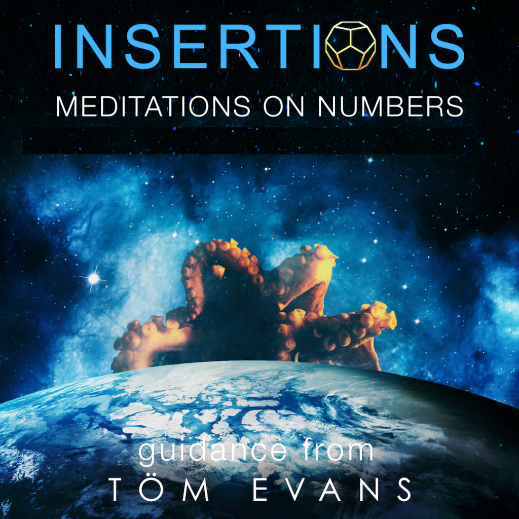 Insertions Meditations on Numbers